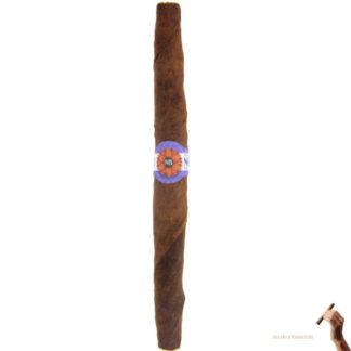 nostrano del brenta taliano sigaro